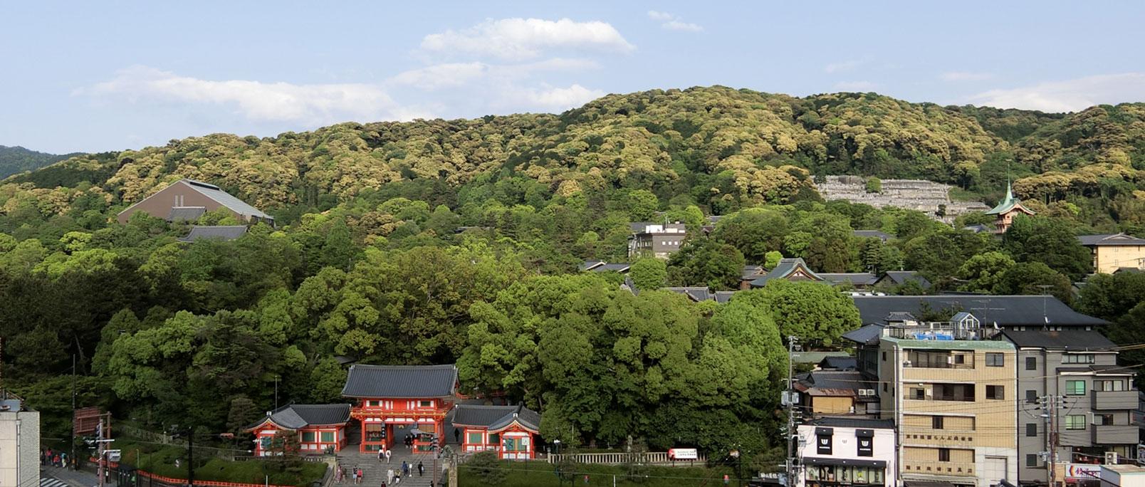 京都盆地を取り囲む東山・北山・西山では,人と森林との関係が疎遠になったことによる森林植生の変化が進み,景観が急激に変化しています。